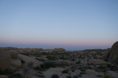Sundowner at Joshua Tree